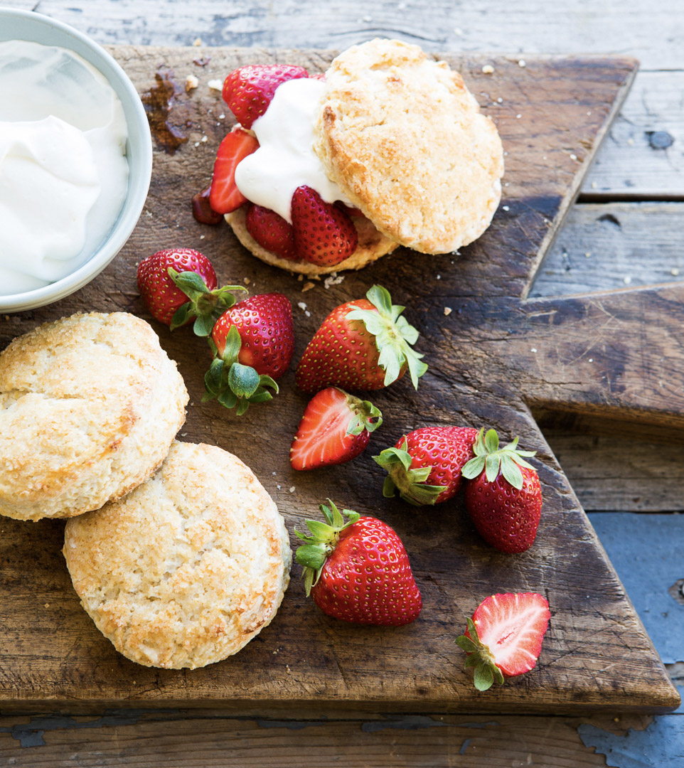 food stylist in San Francisco - Strawberry Shortcake Dessert of the Day cookbook by Weldon Owen photographed by Kim Laidlaw Photographer